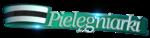 Logo_PIELEGNIARKI.png