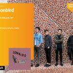 Sonbird | Empik Galeria Bałtycka