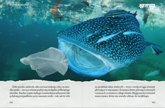 """Minęło ponad 150 lat od wynalezienia plastiku! Świętujemy? LIFESTYLE, Książka - Najnowsza książka Neli pod tytułem """"Nela w krainie orek"""" jest już dostępna w sprzedaży. O czym jest książka? Opowiada o pływaniu z dzikimi orkami, obserwacjach waleni w różnych częściach świata i plastiku, który wysyłamy do oceanów."""